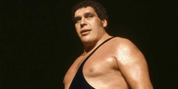 Who Was Andre the Giant Married To?